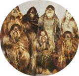 Wookie: семейство Чубакки